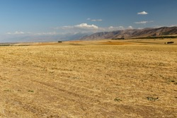Agricultural land, field in Kazakhstan on a background of mountains
