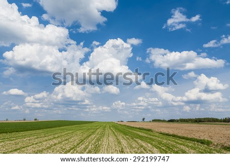 Agricultural landscape, plowed role, clouds on the horizon.