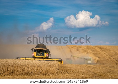 Agricultural machinery harvesting wheat field. Combine harvester working during harvest season at summer.