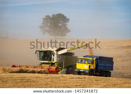 Agricultural machinery on wheat field at drought summer. Combine harvester loading truck with harvested grain. Agriculture industry