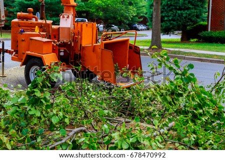 Agricultural machinery, wood shredder chipper machine to remove