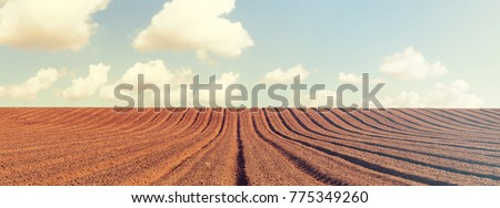 Agricultural plowed field. Ploughing field. Arable land under the bright sky. Rural landscape