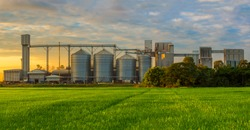 Agricultural Silos - Building Exterior, Storage and drying of grains, wheat, corn, soy, sunflower against the blue sky with rice fields.