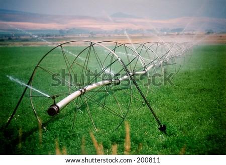 agricultural sprinkler in Montana.