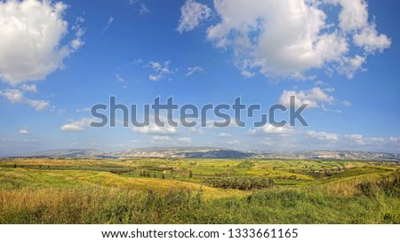 Agricultural valley landscape. Green wheat fields, arable lands, olive plantations.  Agricultural theme. Galilee harvesting. Farming paradise of Israel #1333661165