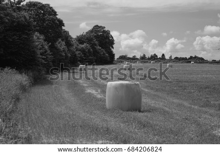 agricultural work #684206824