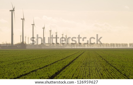 Agriculture and wind farming in winter