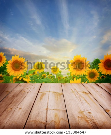 agriculture background with wooden planks
