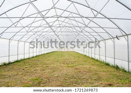 agriculture concept, industrial greenhouse inside, greenhouse management ストックフォト ©