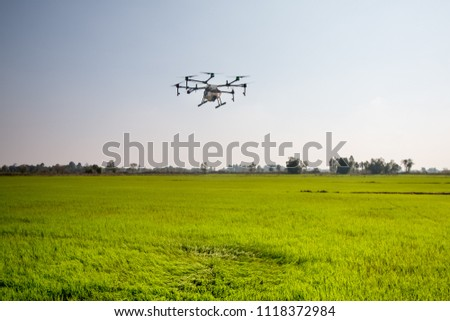 agriculture drone fly on sky and rice field #1118372984