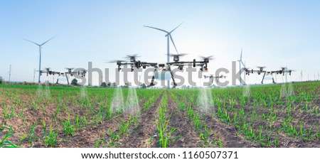 Agriculture drone fly to spray fertilizer on panorama sugarcane fields, Smart farm 4.0 concept #1160507371