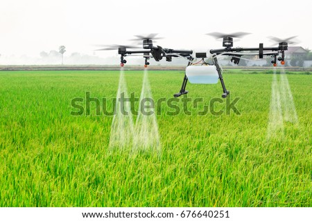 Shutterstock Agriculture drone fly to sprayed fertilizer on the rice fields