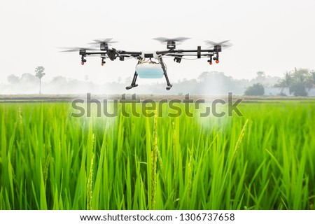 Agriculture drone fly to sprayed fertilizer on the rice fields, Smart farm concept #1306737658