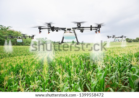 Agriculture drone fly to sprayed fertilizer on the sweet corn fields #1399558472
