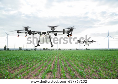 Agriculture drone flying on the green corn field #639967132