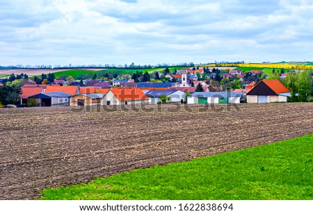 Agriculture farm field in summer. Agriculture farm fields