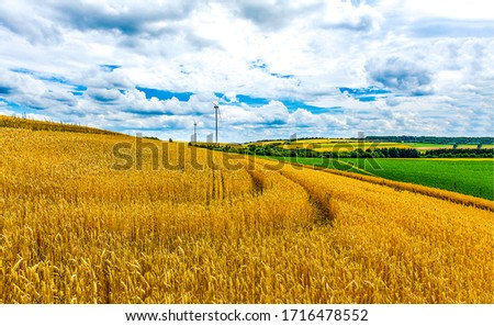 Agriculture farm fields landscape view