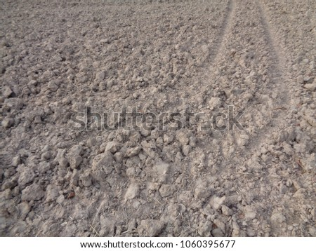 Agriculture Field Background. #1060395677