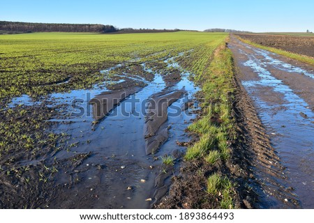 Agriculture field destruction by water erosion damage on crop or grain in farmland after rain landscape Photo stock ©