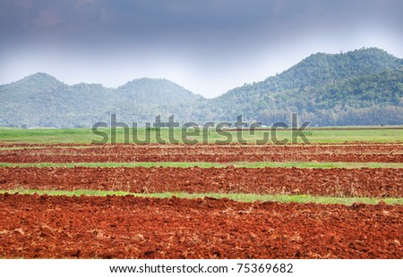 Agriculture field in front of blue sky and mountain scenery.