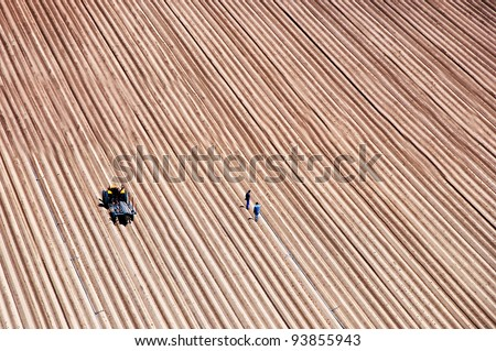 Agriculture field lines and two farmers with tractor - stock photo