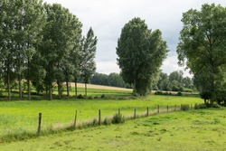 Agriculture fields, trees and green lawns at the Flemish countryside