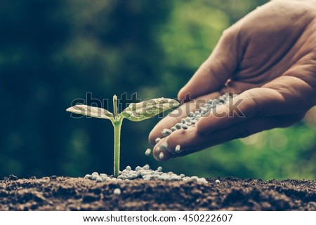 Agriculture. Growing plants. Plant seedling. Hand nurturing young baby plants growing on fertile soil with natural green background #450222607
