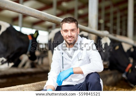 agriculture industry, farming, people and animal husbandry concept - veterinarian or doctor and cows in cowshed on dairy farm