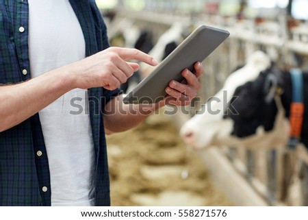 agriculture industry, farming, people, technology and animal husbandry concept - man or farmer with tablet pc computer and cows in cowshed on dairy farm