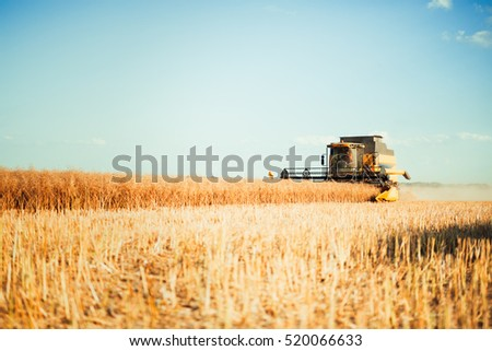 Agriculture machine harvesting crop in fields