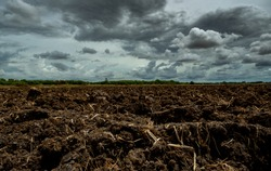 Agriculture plowed field. Black soil plowed field with stormy sky. Dirt soil ground in farm. Tillage soil prepared for planting crop. Fertile soil in organic agricultural farm. Landscape of farmland.