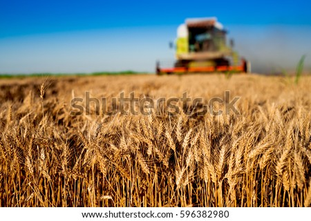 agriculture tractor cultivating ...
