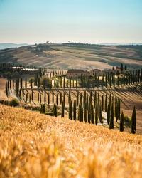 Agriturismo Baccoleno - Tuscany, Italy