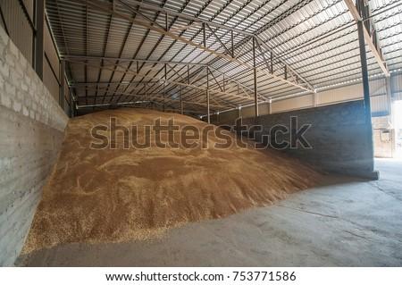 agro elevator grain storage processing