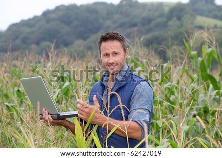 Agronomist analyzing cereals with laptop computer
