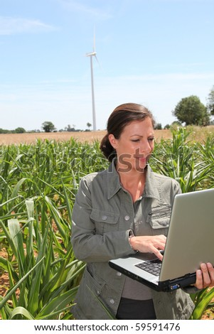 Agronomist in corn field