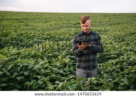 Agronomist inspecting soya bean crops growing in the farm field. Agriculture production concept. young agronomist examines soybean crop on field in summer. Farmer on soybean field #1470655619