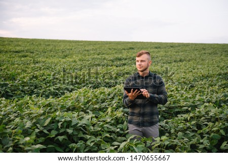 Agronomist inspecting soya bean crops growing in the farm field. Agriculture production concept. young agronomist examines soybean crop on field in summer. Farmer on soybean field #1470655667