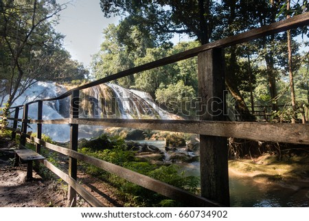 Shutterstock AGUA AZUL WATERFALLS AND NATURE IN CHIAPAS, MEXICO