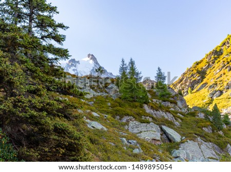 Aiguille du Midi snow mountain ridge cliffs summit antenna tower view from pine trees forest, Chamonix travel hiking trail running, France Alps, Europe tourism. #1489895054