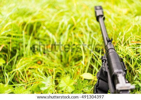 Aiming a rifle in the grass covered with morning dew. Close up view from ground level #491304397
