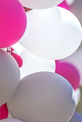 Air balloons in pink and white colors.