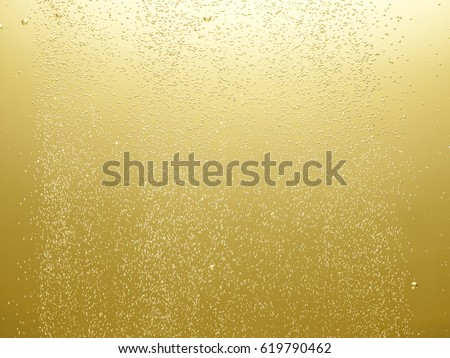 Air bubbles of champagne