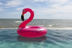 Air flamingos balloon float in the swimming pool by the sea