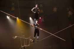 air gymnasts in the circus