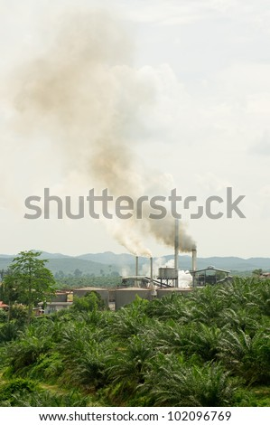 air pollution produced by the palm oil mill