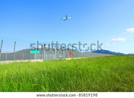 Airplane fly over the green grasses