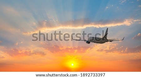 Airplane flying over tropical sea at sunset Photo stock ©