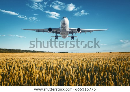 Airplane. Landscape with big white passenger airplane is flying in the blue sky over wheat field at colorful sunset in summer. Passenger airplane is landing. Business trip. Commercial plane. Vintage