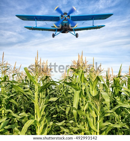 airplane over a maize field #492993142